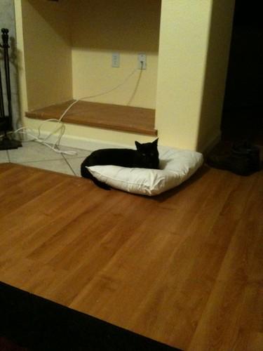 Buddah's cheap bed