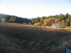View at Apple Hill