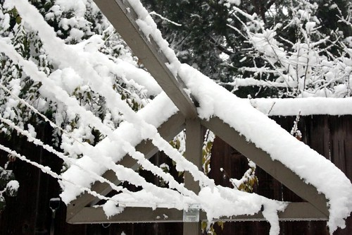 snow on the clothesline