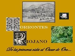 Torrontés Riojano – Valle de Famatina: De las primeras vides al Oscar de Oro…