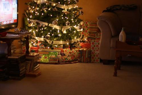 Christmas Festivities 2009 135