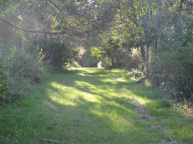 Lakeside Trail