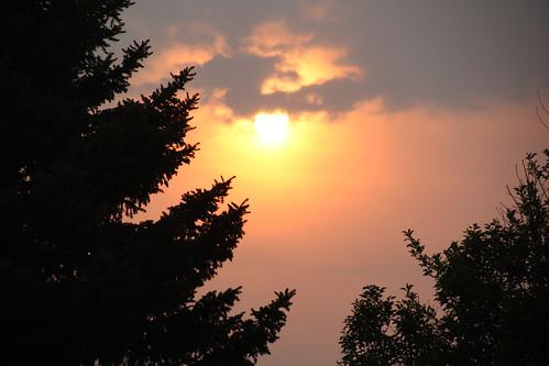 smoky sun2