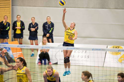 "5. Heimspiel vs. TV Gladbeck • <a style=""font-size:0.8em;"" href=""http://www.flickr.com/photos/88608964@N07/31974498874/"" target=""_blank"">View on Flickr</a>"