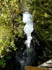 photo - Cleddau River Waterfalls, The Chasm (Jassy-50) Tags: photo newzealand chasmwalk thechasm chasm walk fiordlandnationalpark nationalpark southisland tewāhipounausouthwestnewzealandworldheritagearea tewahipounausouthwestnewzealandworldheritagearea tewāhipounau tewahipounau unescoworldheritagesite unescoworldheritage unesco worldheritagesite worldheritage whs cleddauriver cleddau river waterfalls water fromabridge takenfromabridge rock geology lookdown