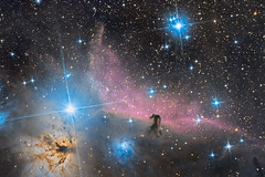 The Horsehead and Flame Nebula (Antoine Grelin) Tags: horsehead ic 434 nebula flame fire red pink colors stars space canon telscope telescope orion galaxy astronomy astrophotography clouds sky night 7dmii astrometrydotnet:id=nova1956876 astrometrydotnet:status=solved