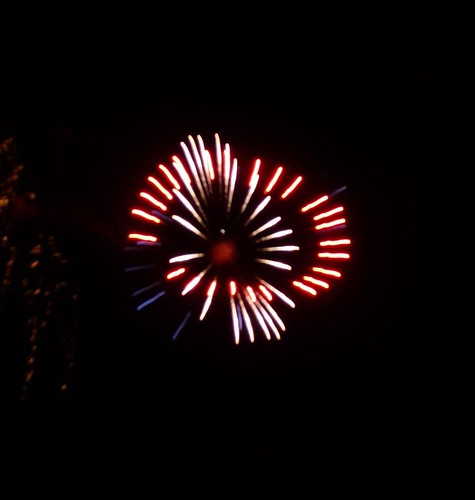 Sonoma Fireworks 4