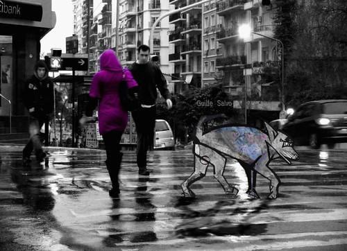 Lobo perdido en la ciudad (una mínima historia) by Gla*