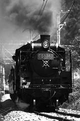 秩父鉄道 C58 363 (2009-08-15) d300 (atem_y_zeit) Tags: summer japan geotagged sigma railway saitama 2009 chichibu steamlocomotive d300 蒸気機関車 c58 c58363 20090815 geo:lat=359549069 geo:lon=1390109347 atemzeit atemyzeit