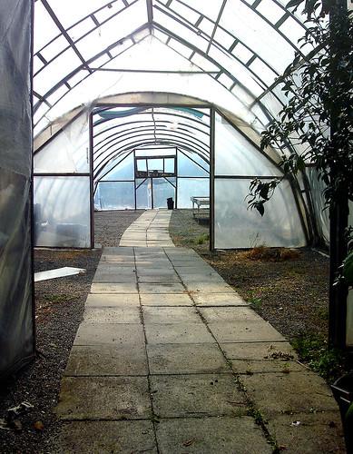 leeres Treibhaus des Gartencenter Hoffmann in Unterengstringen