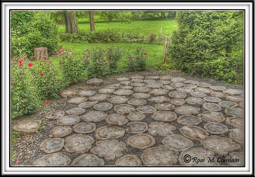 Bailey's Arboretum