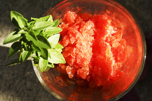 Tomaten Granita