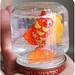 baby-food-jar-6