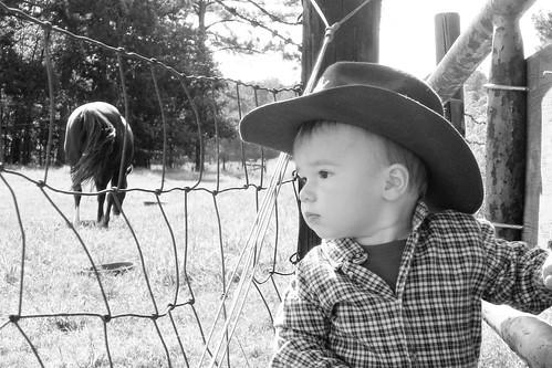 Farm-Babies-142