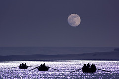 Following the moon (ania.egypt) Tags: travel light moon lake holiday night photoshop boat nikon egypt silhouettes oasis noc ksiyc d wakacje oaza egipt jezioro fayoum podr odzie fajum