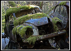 Wreck (20) (frode skjold) Tags: old trees cars car trash vintage moss rust sweden decay wheels sverige wreck carwreck trr mose twop vrmland bilvrak bstns canoneos450d 2strokeautounion