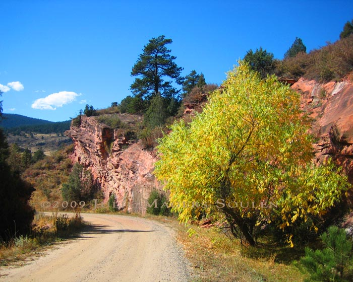 fall landscape of country road in Redstone Canyon Colorado with red rocks and gold tree