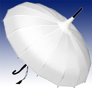 white parasol umbrella