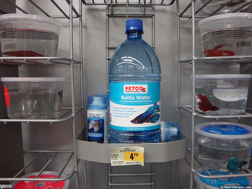 $5 Betta Water - front