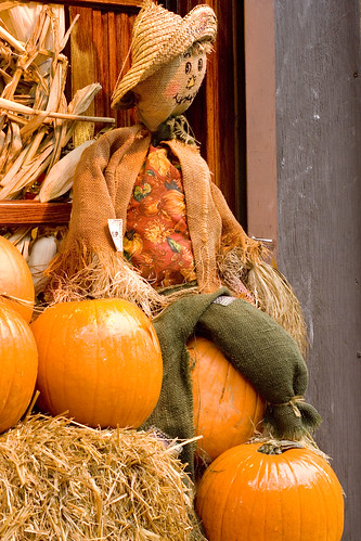 pumpkins and scarecrow 2