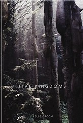 Five Kingdoms by Kelle Groom