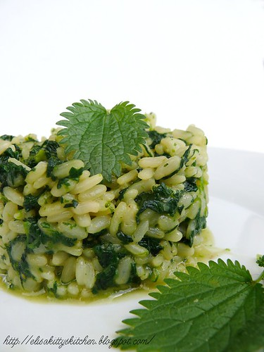 Risotto all'ortica e gewurztraminer