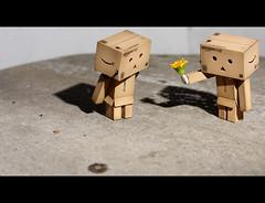 errrr......can you be my girl ? (leungchopan) Tags: canon toy hongkong eos 50mm border dairy ef50mmf18ii   450d danboard digitalrebelxsi   kissdigitalx2