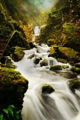 Lindsey Creek Cascade (Darrell Wyatt) Tags: autumn fall water creek waterfall waterfalls columbiagorge soe columbiarivergorge slowwater flickrdiamond natureselegantshots lindseycreek