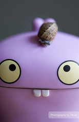 Ehh Babo... (21/30) (Morphicx) Tags: pink animal actionfigure 50mm friend purple action bokeh vinyl snail ugly 5d uglydoll 50 uglydolls babo 30days 5014 bokehwhores bokehwhore uglydollsunite uglydollunite