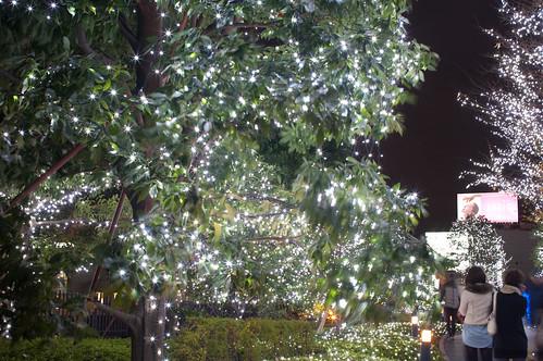 Shinjuku ilumination-6