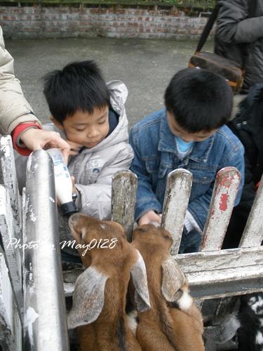 2009 12 20_40可達羊場.jpg