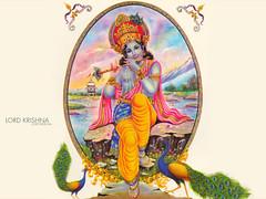 lor45a (SuganeswaranParamaswaran) Tags: vishnu god indian jesus amman hanuman shiva krishna siva sabari malai tamil oom indus durga murugan shivan pillayar vinayagar iyappan durgai murugaan vellatamil iyappantamil