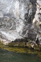 Dolostone Cliffs