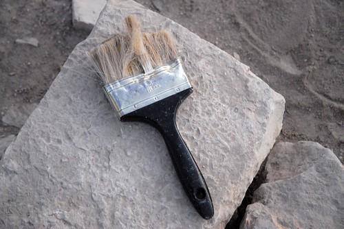 archaeology brush jordan dhiban