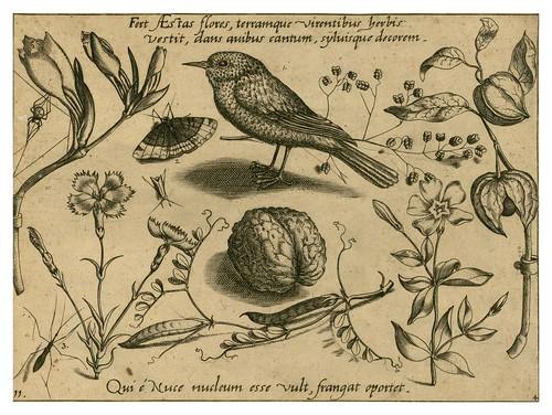 016-Archetypa studiaque patris 1592