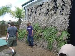 Weaving fronds