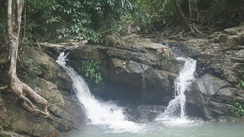Waterfall Mapawa