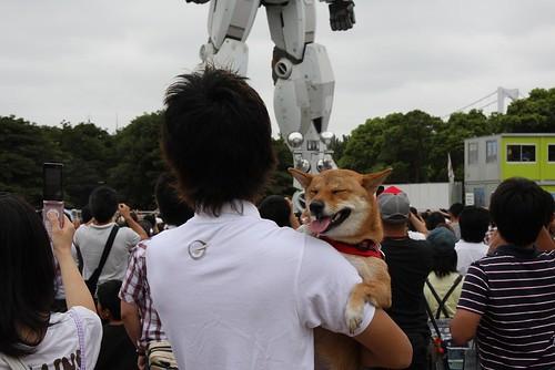 Real Size Gundam
