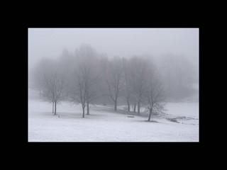 Winter in Oslo II