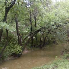 chisholm trail plano 9 13 2009
