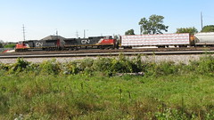 Southbound Canadian National freight train arrives at Schiller Park Illinois. Late September 2009.