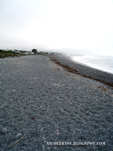 kaikoura pebble beach