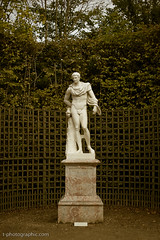 Statue, Gardens at Palace of Versailles (T. Scott Carlisle) Tags: paris france palaceofversailles tsc tphotographiccom tscottcarlisle