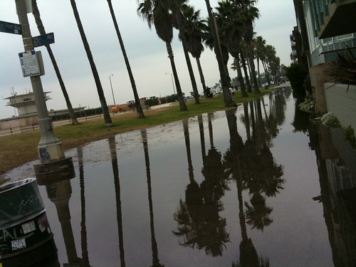 Venice flooding from fire hydrant accident