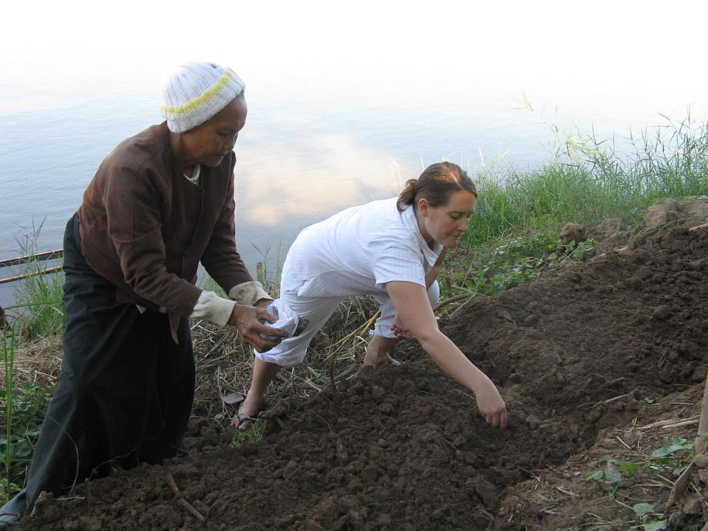 Volunteer Haddie works on a Thai farm