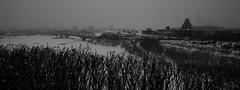 River Panorama (Ballygrant Boy) Tags: winter snow ontario canada nikon ottawa sigma parliament 1224 d80