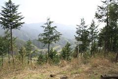 高畑山からの眺望