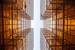 Hong Kong (gstads) Tags: architecture hongkong lines highrise kowloon cantonroad gold golden
