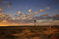 Morning Light (Jacqui Barker Photography) Tags: flindersranges windmill morninglight sunrise clouds australia southaustralia australianoutback southaustralianoutback landscape australianlandscape rural warm light