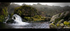 Serenity... (Chantal Steyn) Tags: panorama fern green water fog river landscape waterfall moss nikon rocks stream nikkor silky d300 nohdr 1685mm goughisland
